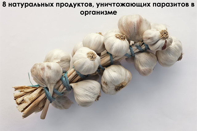 pihtovoe-maslo-lechenie-parazitov